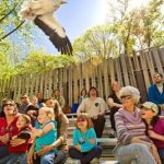 Zoo New England Discount: Kid's Price Saturdays