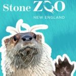 Franklin Park and Stone Zoos winter fun days
