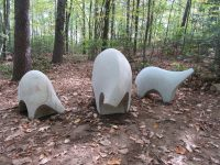 A Walk in the Woods: Enjoy Free Sculpture Park