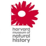Harvard Museum of Natural History: FREE for MA residents