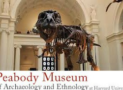 Peabody Museum of Archaeology and Ethology: FREE for MA residents